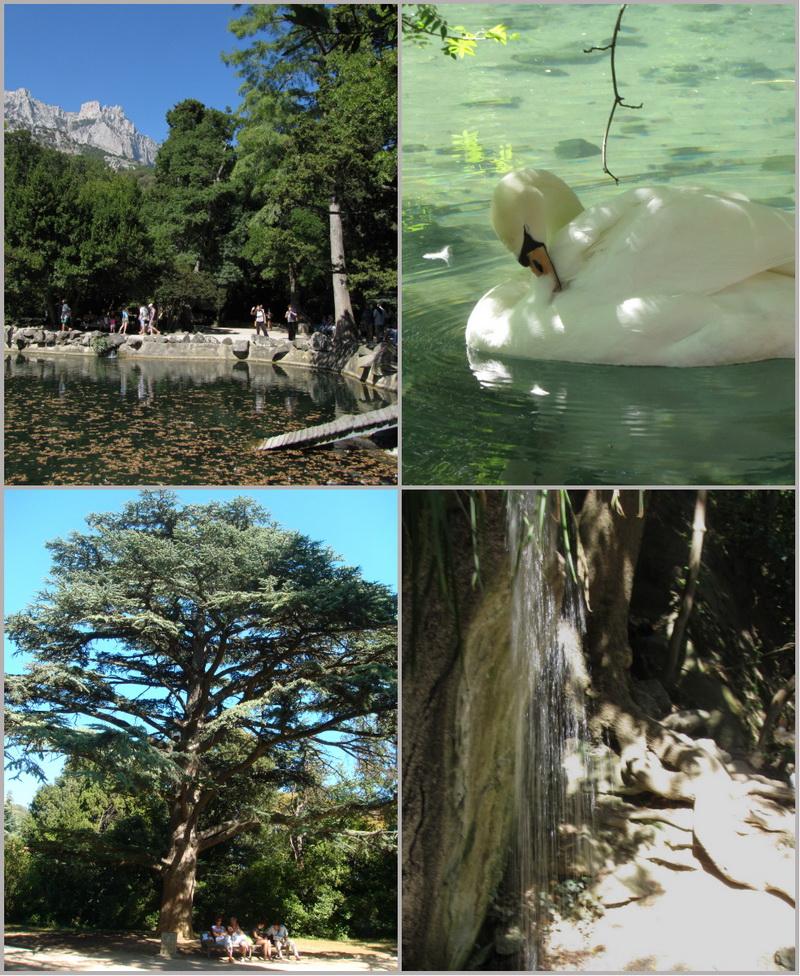 Достопримечательности Крыма: Топ-7 чудесных парков полуострова фото 1