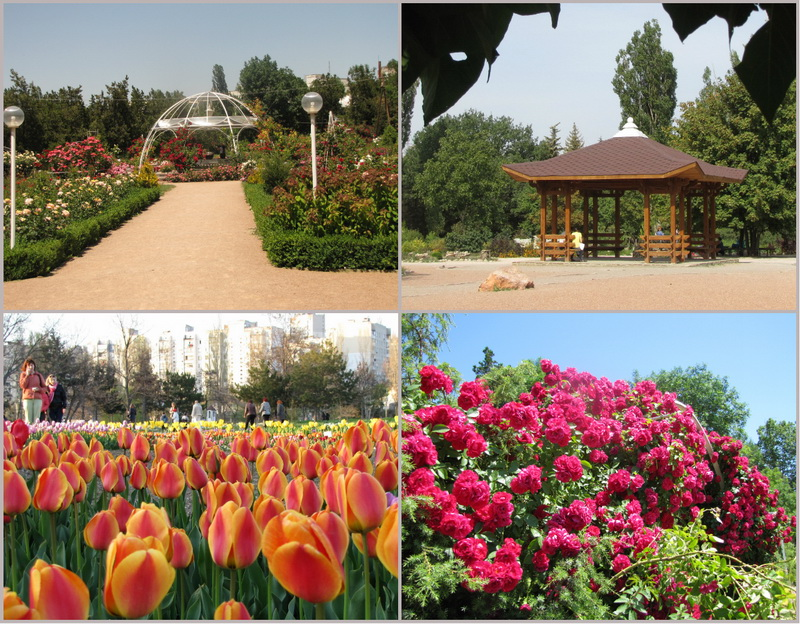 Достопримечательности Крыма: Топ-7 чудесных парков полуострова фото 5
