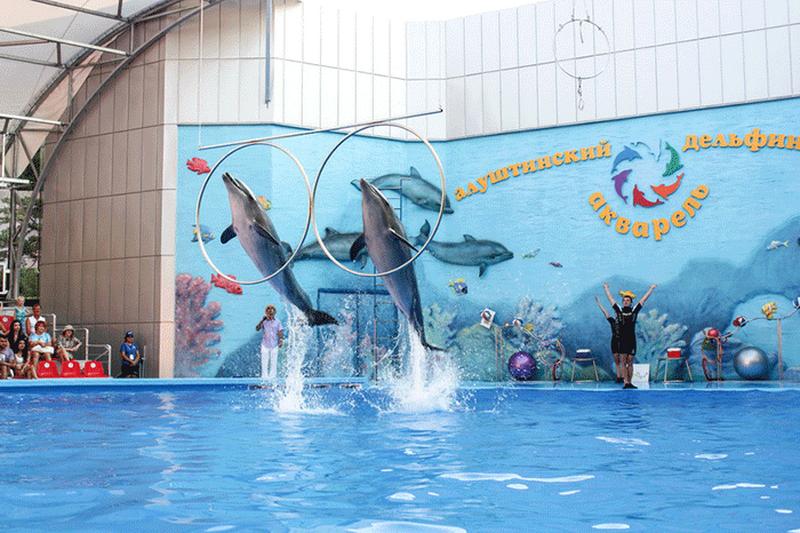 Достопримечательности Крыма: Топ-5 дельфинариев полуострова фото 4