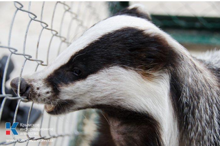 Коллекция зооуголка в Севастополе пополнилась новыми обитателями