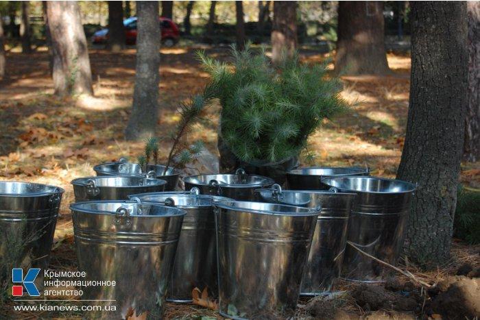 В Алуште высадили новые деревья