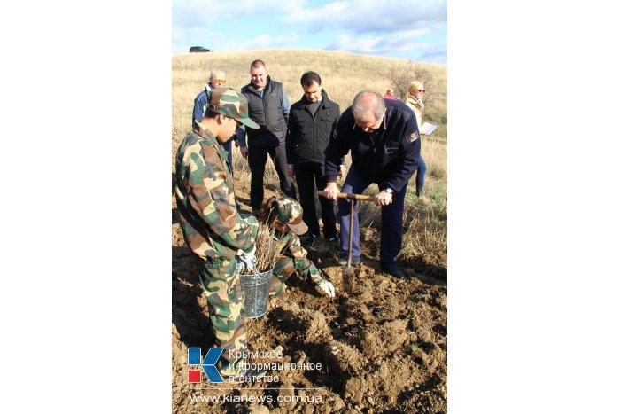 Крымский премьер посадил клены в Симферопольском районе