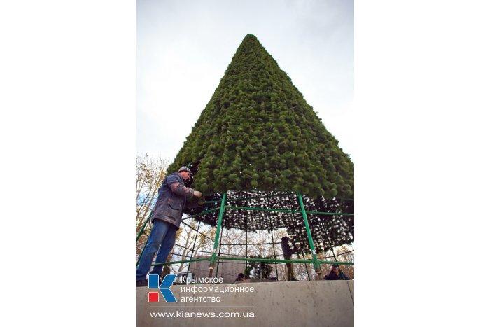 В Севастополе устанавливают 15-метровую елку