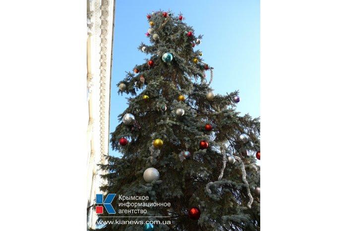 В Симферополе нарядили живую елку