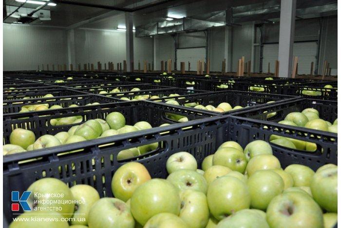 Продукция крымских товаропроизводителей конкурентоспособна и востребована, – Могилев