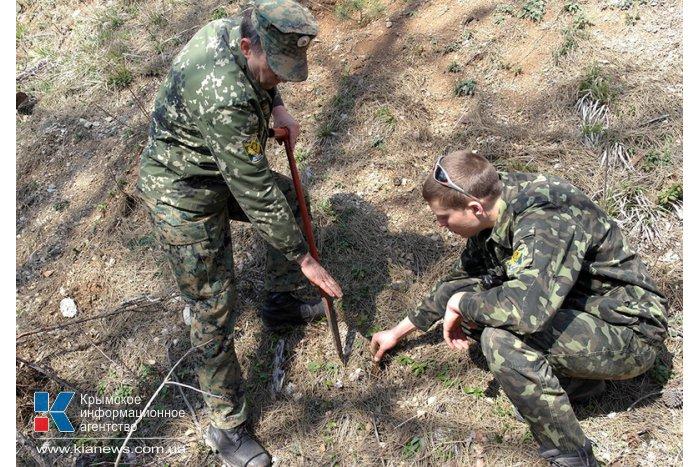 На горельнике Ялтинского заповедника высадили около 300 саженцев