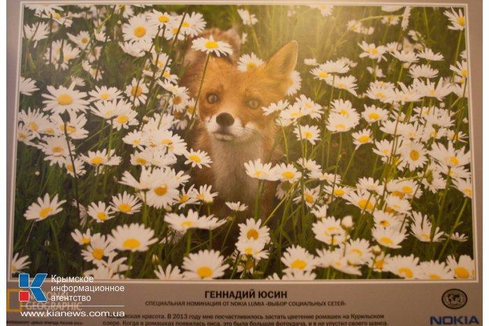 В Севастополе открылась выставка «National Geographic»