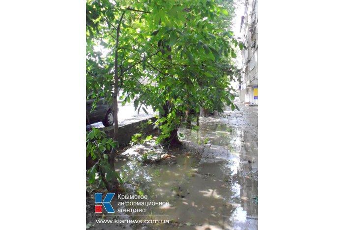 Штормовой ветер в Алуште повалил деревья и снес крыши домов