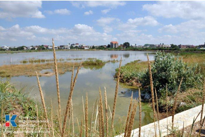 Экологи оценили ущерб от строительства дамбы на озере под Феодосией в 3 млн. рублей