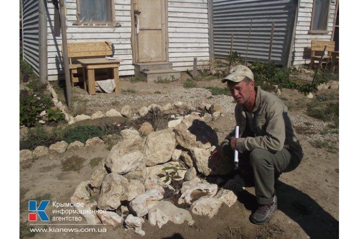 Экологи предлагают восстановить леса в западном Крыму