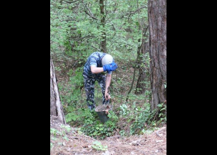 Близ Ялты обнаружили 400 кг тухлого мяса