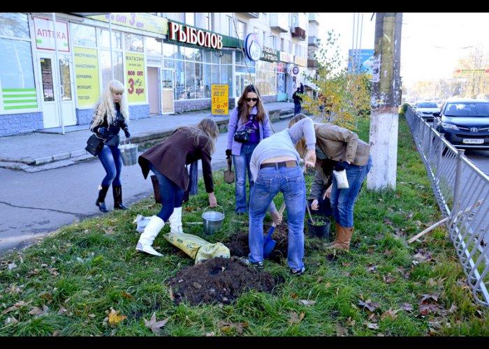 Две улицы Симферополя озеленили платанами