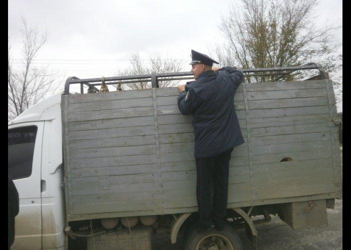 В Крыму ловят нарушителей ветеринарно-санитарных требований