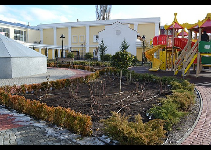 В сквере Симферополя сломали очередной кедр