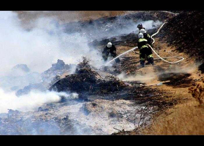 В Севастополе прошли учения по тушению лесного пожара