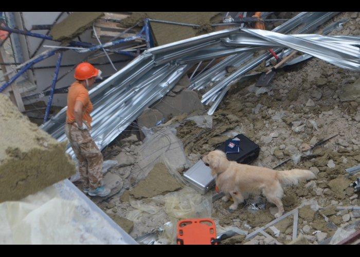 На месте обрушения крыши кадетского училища в Севастополе работают спасатели