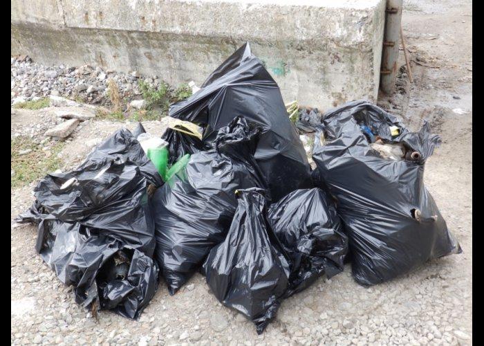 В Ялте завершилась акция «Чистый берег»