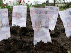 Налоги, В Крыму местные бюджеты недополучают плату за землю