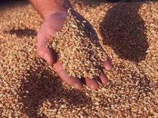 В Крыму начали тестировать электронную аграрную биржу