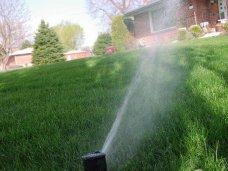 Благоустройство, инспекция по благоустройству, Симферополь благоустройство, В Алуште очищенную сточную воду будут использовать для полива растений