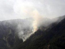 Возгорание лесной подстилки вблизи Ялты локализовано