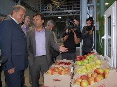В Симферопольском районе открыли фруктохранилище