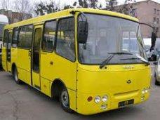В Алуште школьники смогут ездить на маршрутках бесплатно