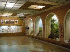 В Феодосии собираются развивать культурный туризм