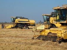 Могилев оценил ход уборки риса в Красноперекопском районе