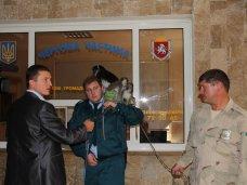 В Ялте конфисковали обезьян у фотографов-живодеров