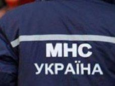 Происшествие, В Белогорском районе ищут пенсионера, который не вернулся домой после прогулки с собакой