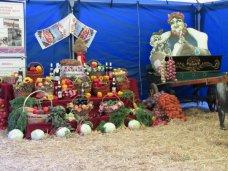 В Бахчисарае состоялся Всекрымский праздник урожая