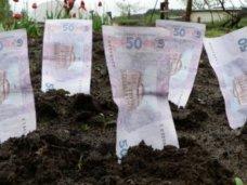 Налоги, В Крыму привлекли к налогообложению 72 собственников и арендаторов земли