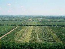 агрофирма Крым, Власти Крыма держат на контроле ситуацию с пайщиками агрофирмы «Крым»