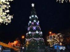 Городская елка, На следующей неделе в Севастополе зажгут новогоднюю елку