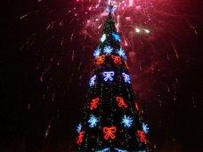 Городская елка, В Севастополе зажгли новогоднюю елку