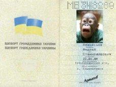 Четверо мужчин пытались улететь из аэропорта Симферополя по поддельным паспортам