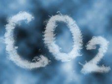 Экология, Уровень загазованности воздуха в Симферополе вдвое превышает норму