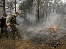 Пожар, Возле Ялты горел лес