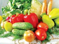 В Крыму запланировали собрать более 350 тыс. тонн овощей