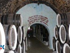 В Крыму необходимо развивать винный туризм, – Константинов