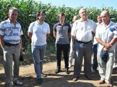 В Крыму обсудили итоги уборки зерновых и эффективность капельного орошения