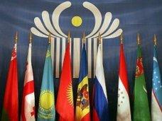 Черноморский экономический форум, Черноморский экономический форум проведут в конце октября