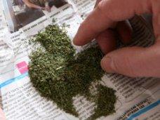 Наркотики, В доме жителя Сакского района нашли марихуану и порох