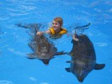Дельфинарий, В Алуште откроется Центр дельфинотерапии