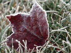 Погода, В Крым идут холода