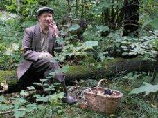 Розыск, В Симферополе нашелся пропавший грибник