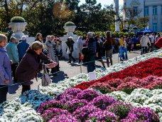 Бал хризантем, В Севастополе впервые проходит бал хризантем