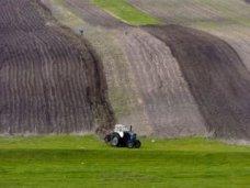 зерновые, В Кировском районе засеяли озимыми 5 тыс. га