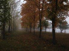 Погода, На неделе в Крым вернутся дожди